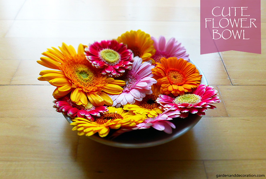 cute flower bowl arrangement