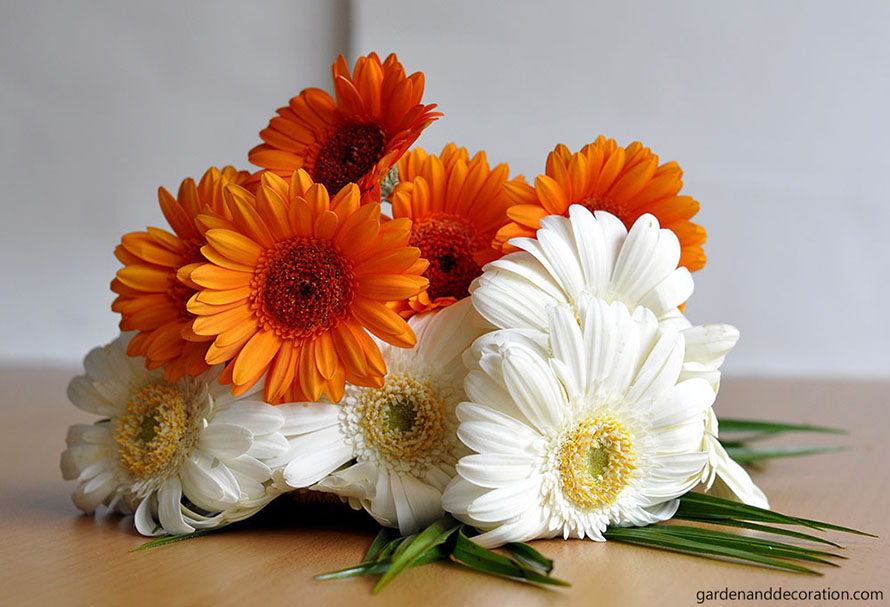 orange and white bridesmaid bouquet idea