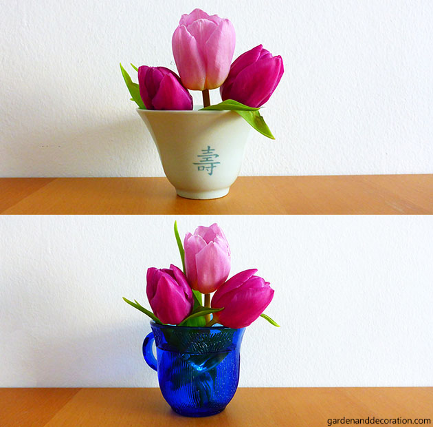 tulips in cups