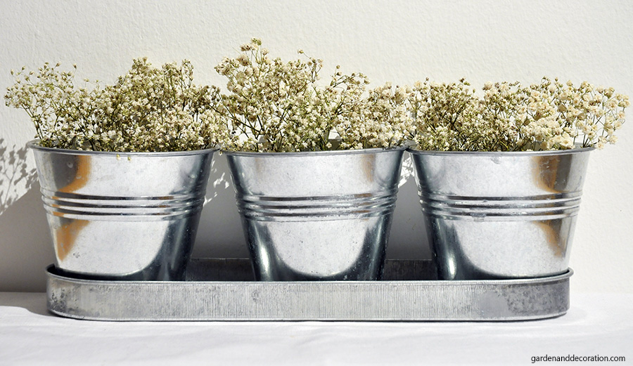 Flower pot decoration with baby´s breath
