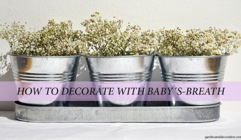 3 ways to decorate with baby's-breath
