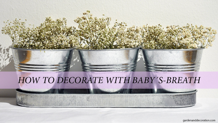 How to decorate baby´s breath?
