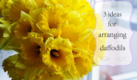 3 easy ideas how to arrange daffodils