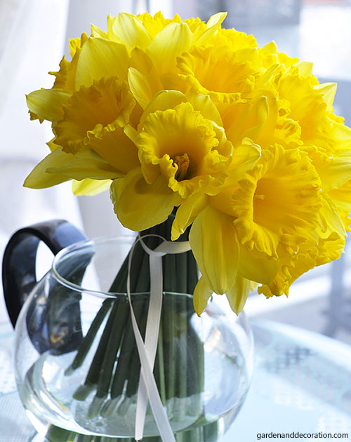 daffodil arrangement ideas