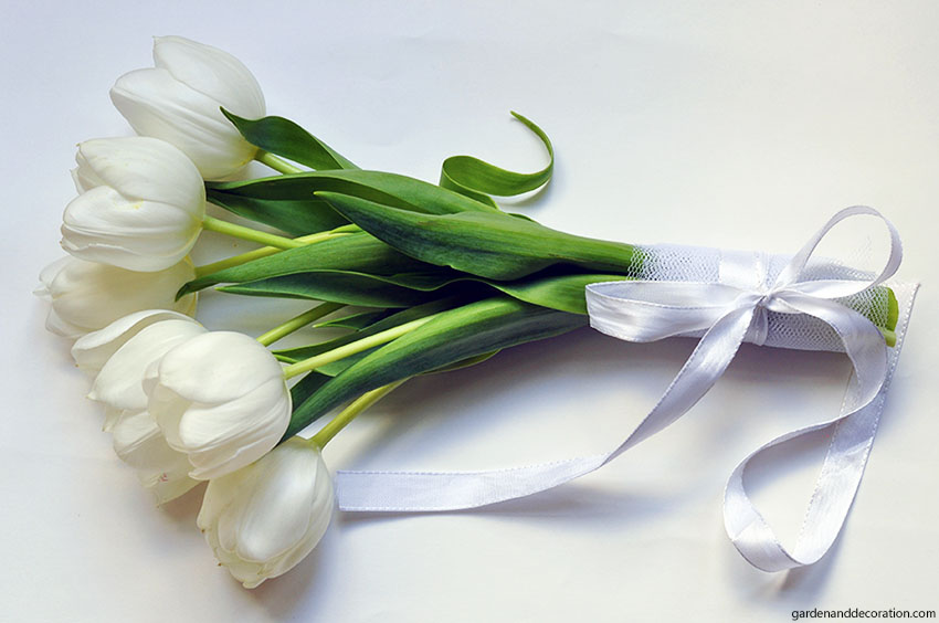 White tulip bouquet for wedding