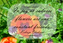 Flowers are our constant friends