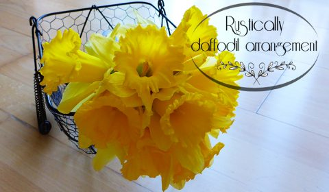 Simple rustically daffodil arrangement