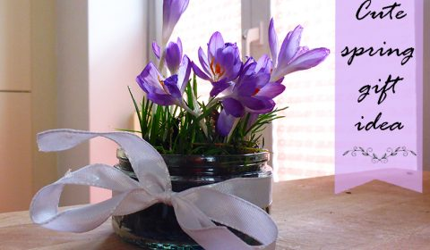 Cute idea for a spring gift with crocuses