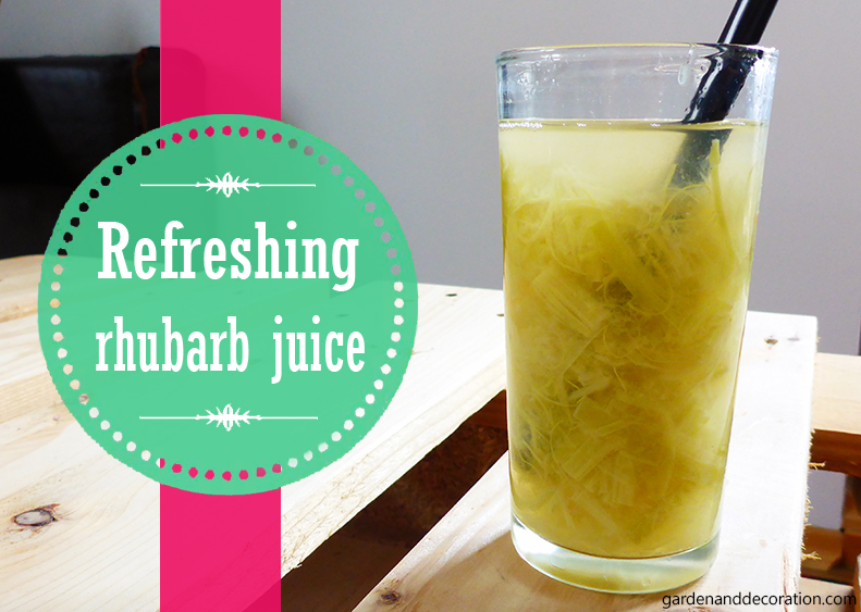 DIY: Rhubarb juice