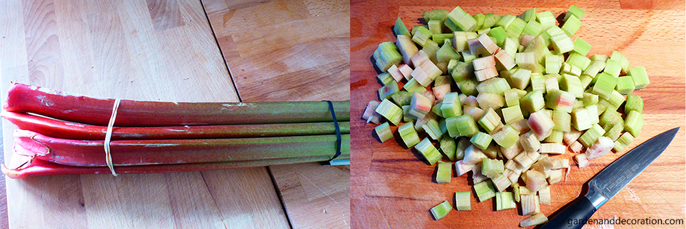how to make rhubarb juice