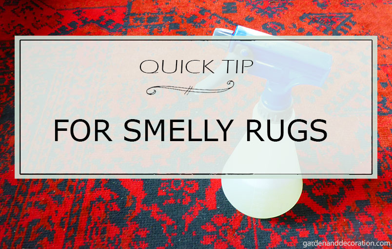 Quick tip for smelly rugs.