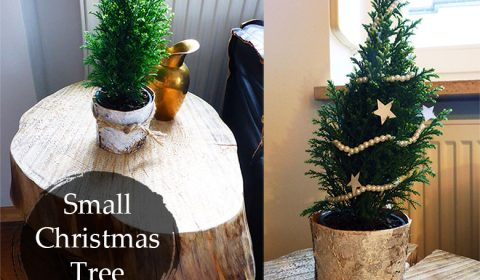 Cute small Christmas tree idea