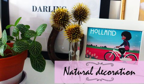 Natural decoration idea made with thistles