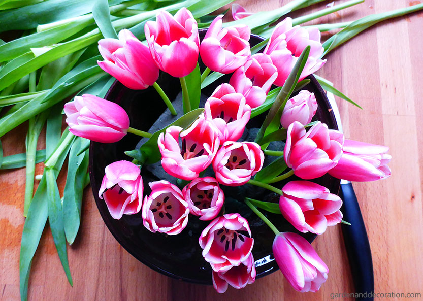 colorful tulip arrangement