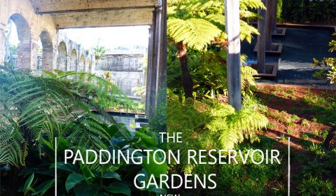 The Paddington Reservoir Gardens, Sydney