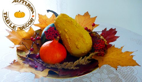 Simple autumn decoration idea for your table