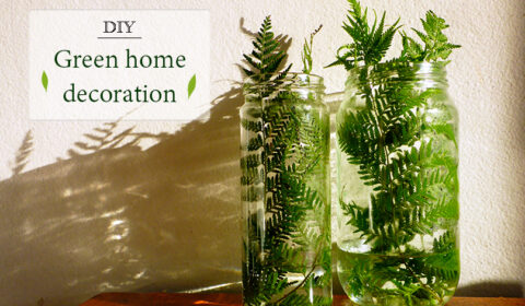 DIY ideas: Greenery for your home