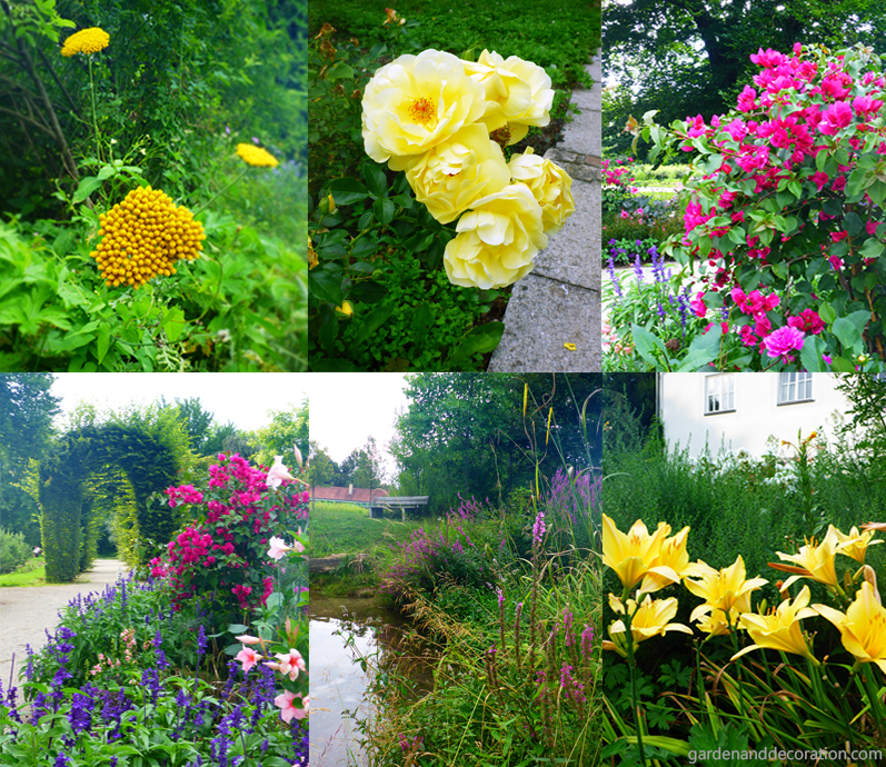 A selection of photographies with flowers from the Rosengarten in Munich