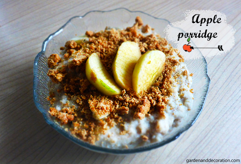Apple porridge in a bowl