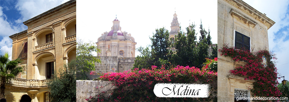Buildings with greenery in Mdina, Malta