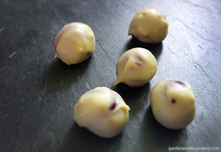Cherries covered with white chocolate