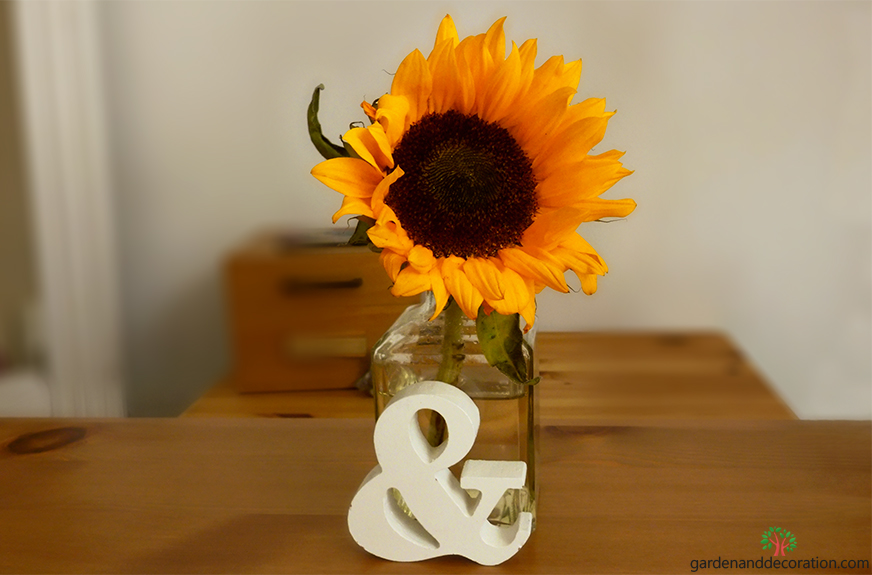 Sunflower in a vase on my work desk