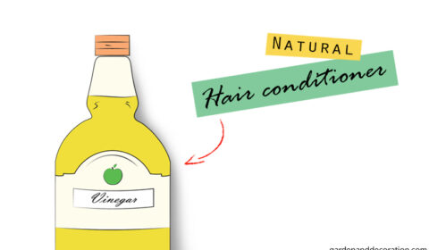 DIY: Natural hair conditioner