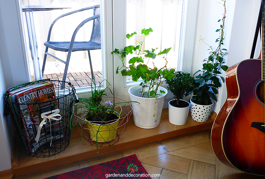 Quick tip for pot plants on your balcony2