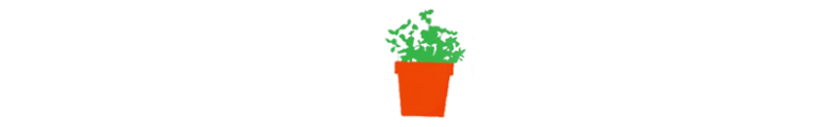 Green plant in a pot illustration