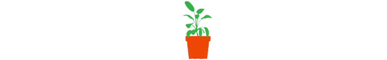 Green plant in a pot illustration2
