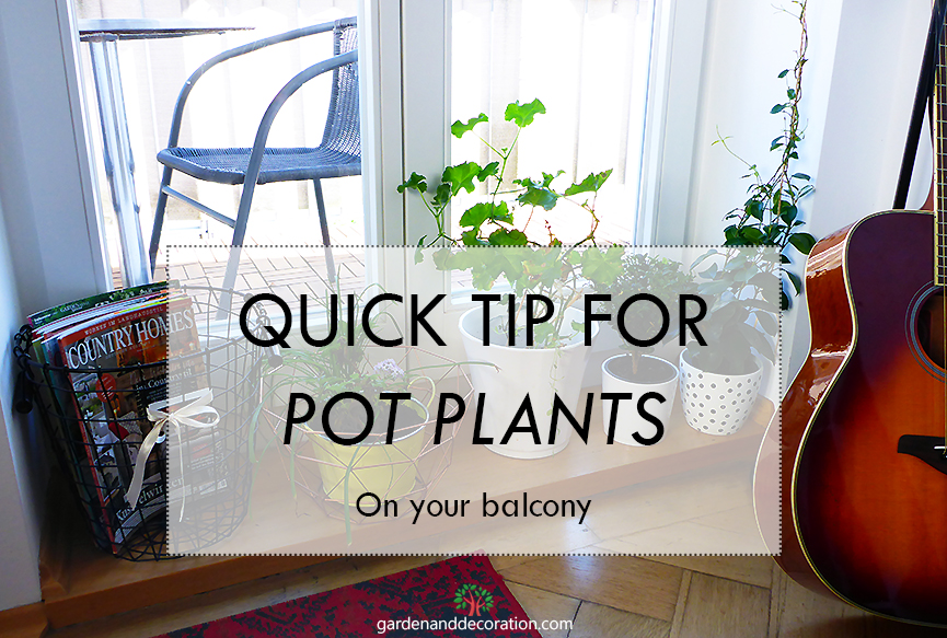 Quick tip for pot plants on your balcony