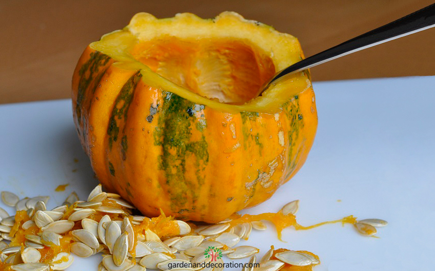 Little pumpkin fall decoration_step by step1_by gardenanddecoration
