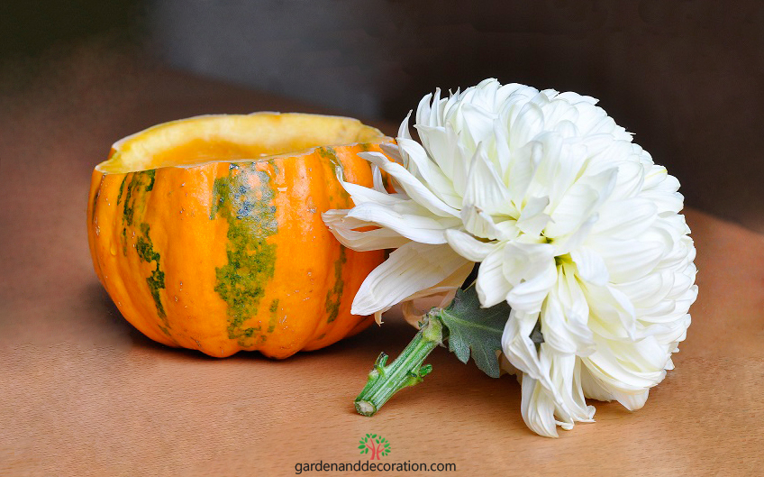 Little pumpkin fall decoration_step by step_by gardenanddecoration