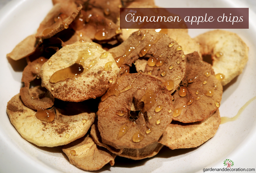 Cinnamon apple chips_by gargenanddecoration